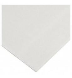 Placa Yeso/carton St 10mm 1.20x2.40mt (97372)22.1k